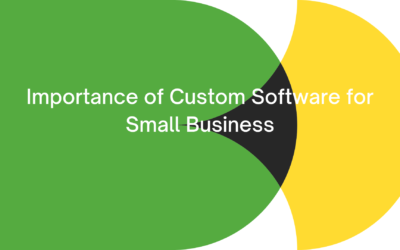 Importance of Custom Software for Your Small Business